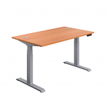 Economy Sit-Stand Office Desk with Memory Control